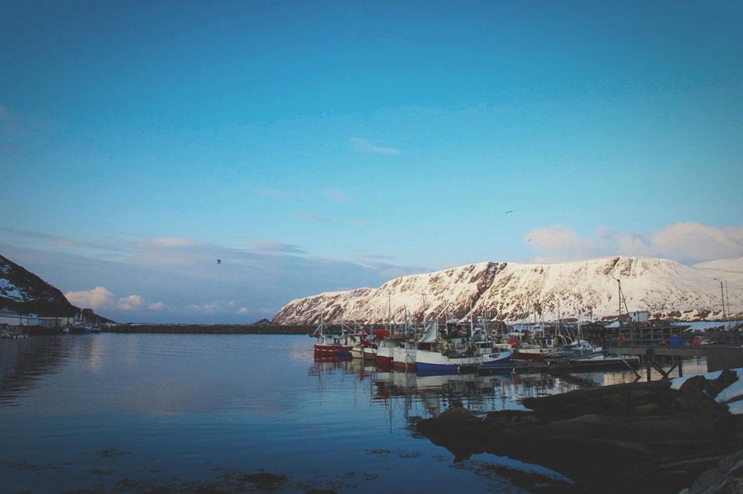 bigousteppes norvège cap nord port