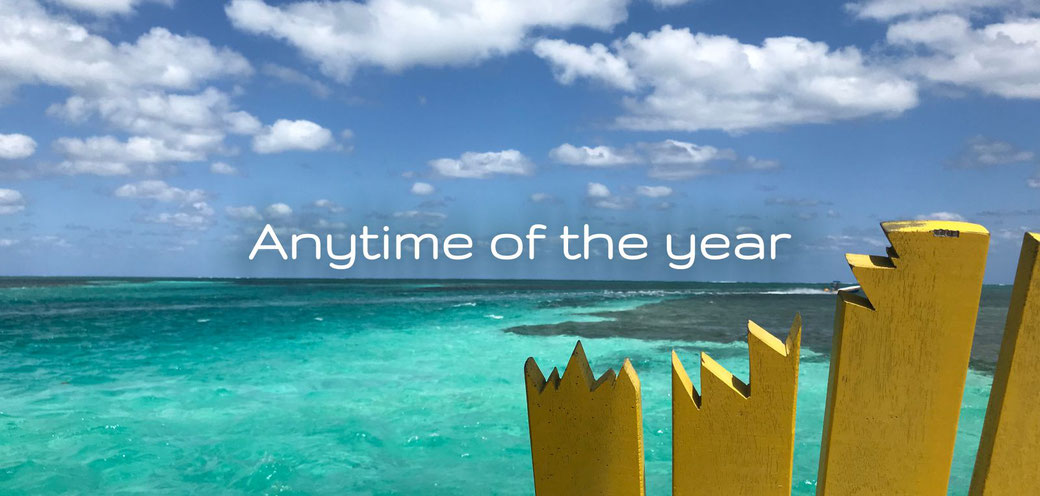 You can visit Caye Caulker any time of the year