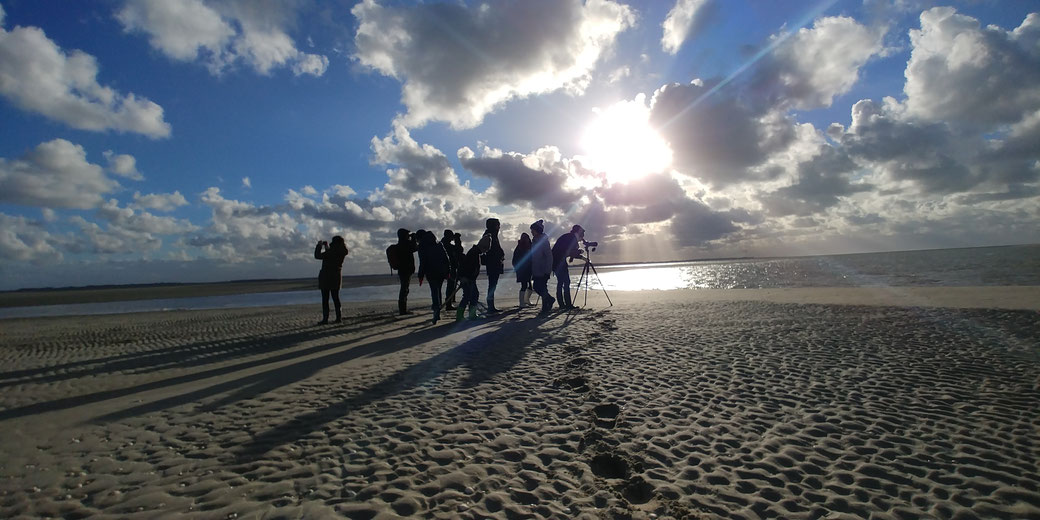 Rando baie de Somme découverte sortie nature