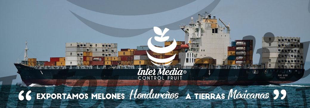 Exportamos melones hondureños a tierras mexicanas en inter media control fruit