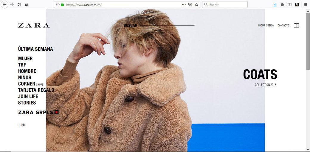 Sitio Web de Zara.