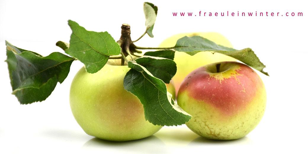 Äpfel | Fräulein Winter
