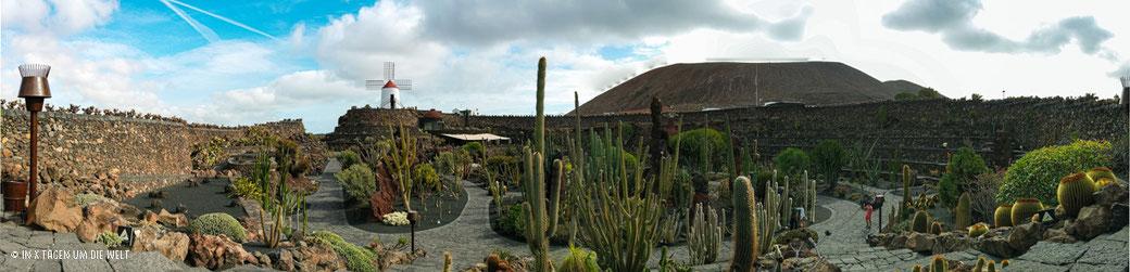 Lanzarote Cesar Manrique Jardin de Cactus