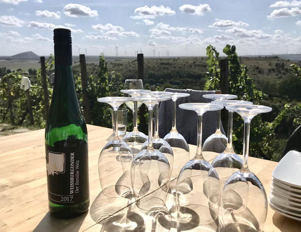 Eigener Weinkeller kaufen bauen zu Hause Garten