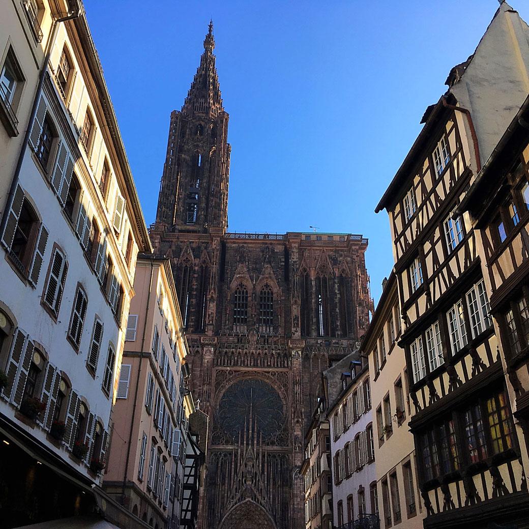Straßburger Münster - Westfassade