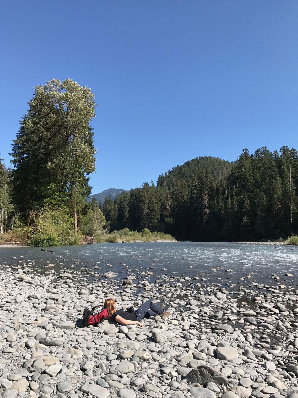 Hoh River Trail - eine kurze Pause auf den warmen Steinen
