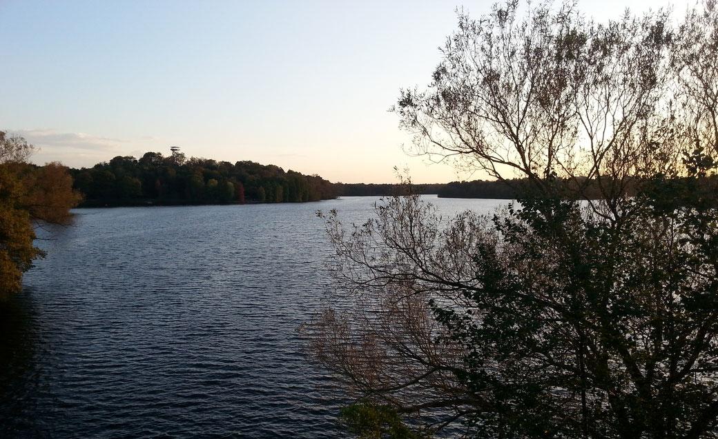 Ein Blick auf die Duisburger Seenplatte im Sonnenuntergang