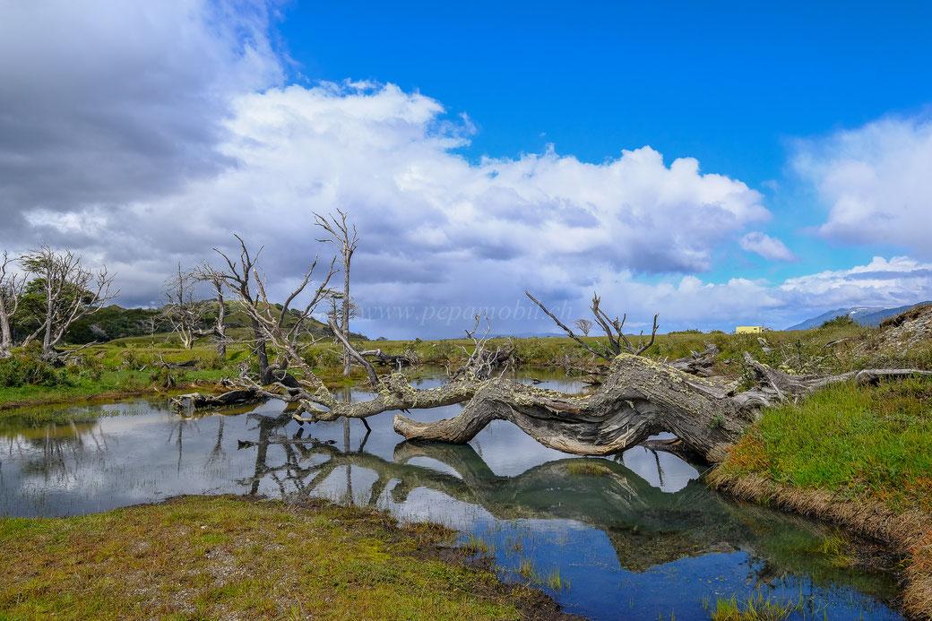Estancia Harberton Tierra del Fuego