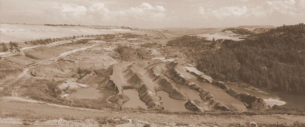 Rippenkippen-Landschaft des Restloches des Tagebaues Espenhain als Hohlform des künftigen Markkleebeger Sees im Jahr 2000.