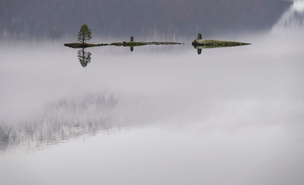 Foto: Steinar Engeland, Unsplash