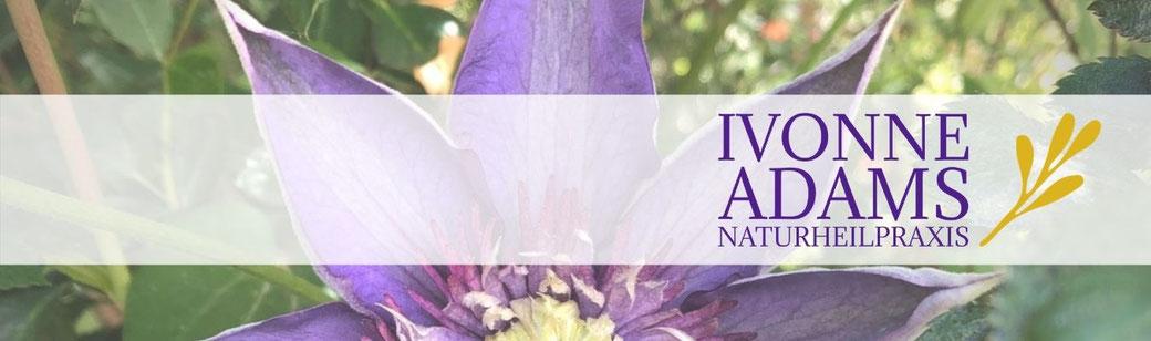 Termin vereinbaren - Naturheilpraxis Ivonne Adams