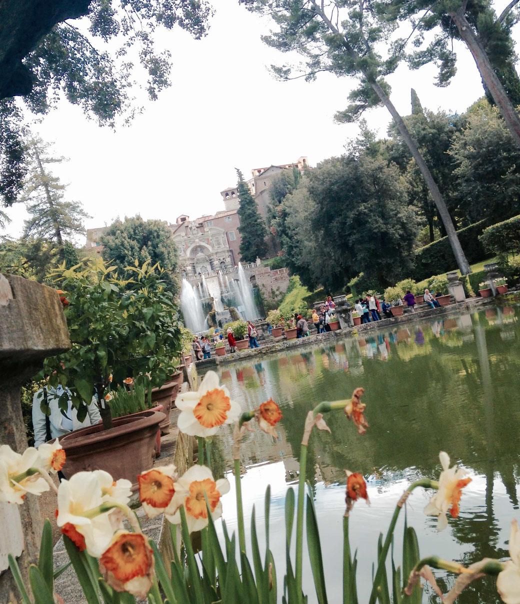 Frühling in Rom - Ein Ausflug in die Villa d`Este in Tivoli