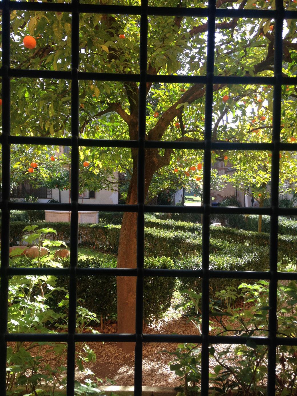 So schön sieht der Garten des Museo Pietro Canonica von drinnen aus!