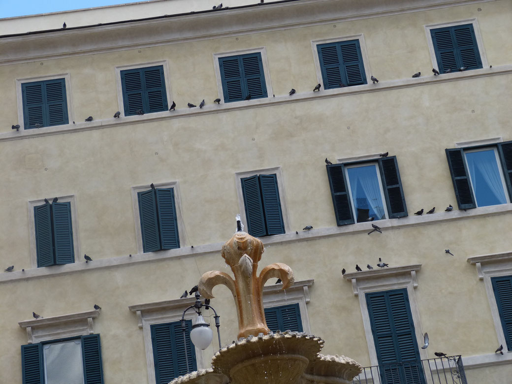 Die Piazza Farnese samt des gleichnamen Palazzo ist in Rom einer der schönsten Ensemble.