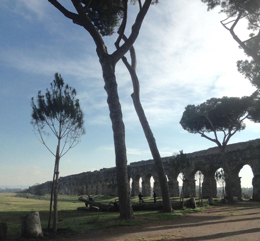 Unterwegs in Rom - Park der Aquädukte