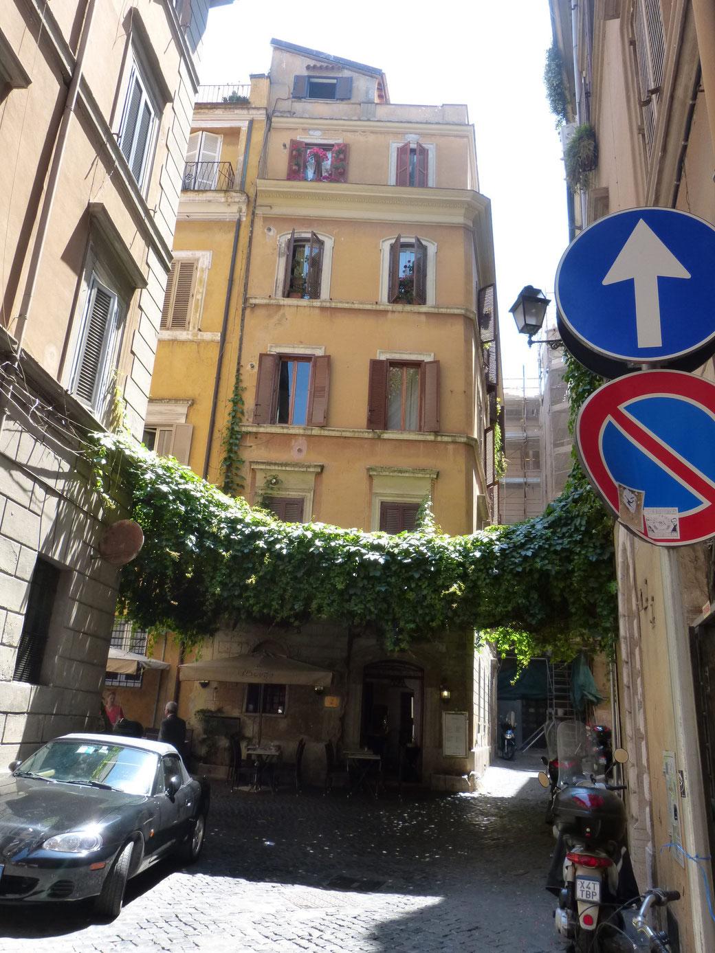 Dieses romantische Efeudach findet Ihr in der Via degli Spagnoli