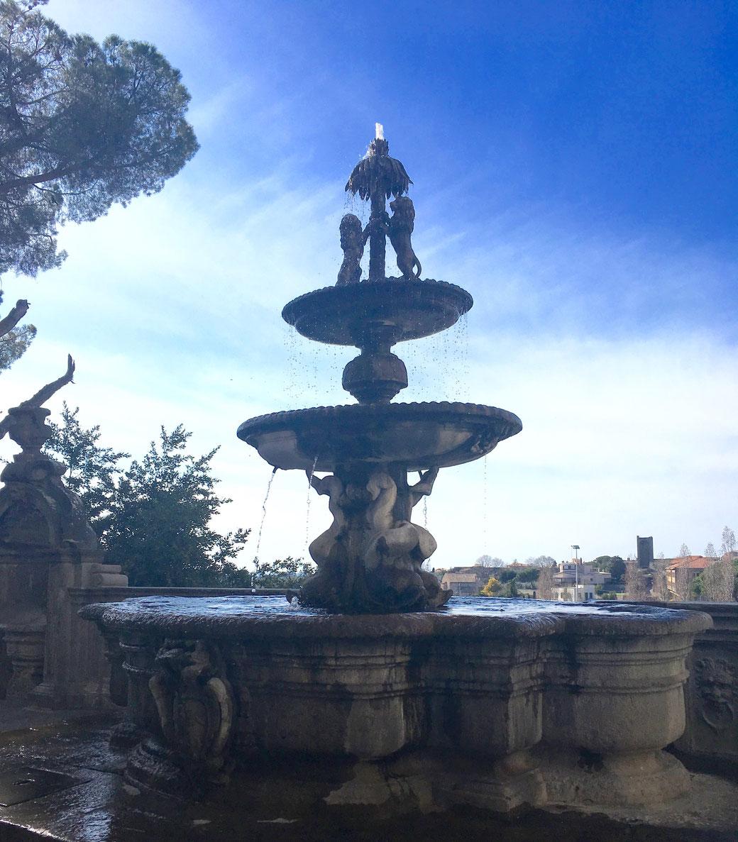 Dieser Brunnen sprudelt hinter dem Palazzo dei Priori