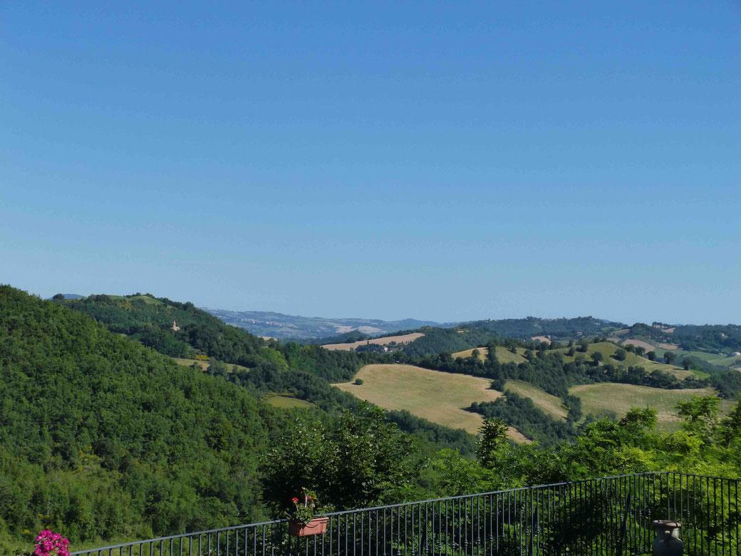 Colleverde Country House - Die Aussicht von der Terrasse ist ein grüner Seelenbaumler.