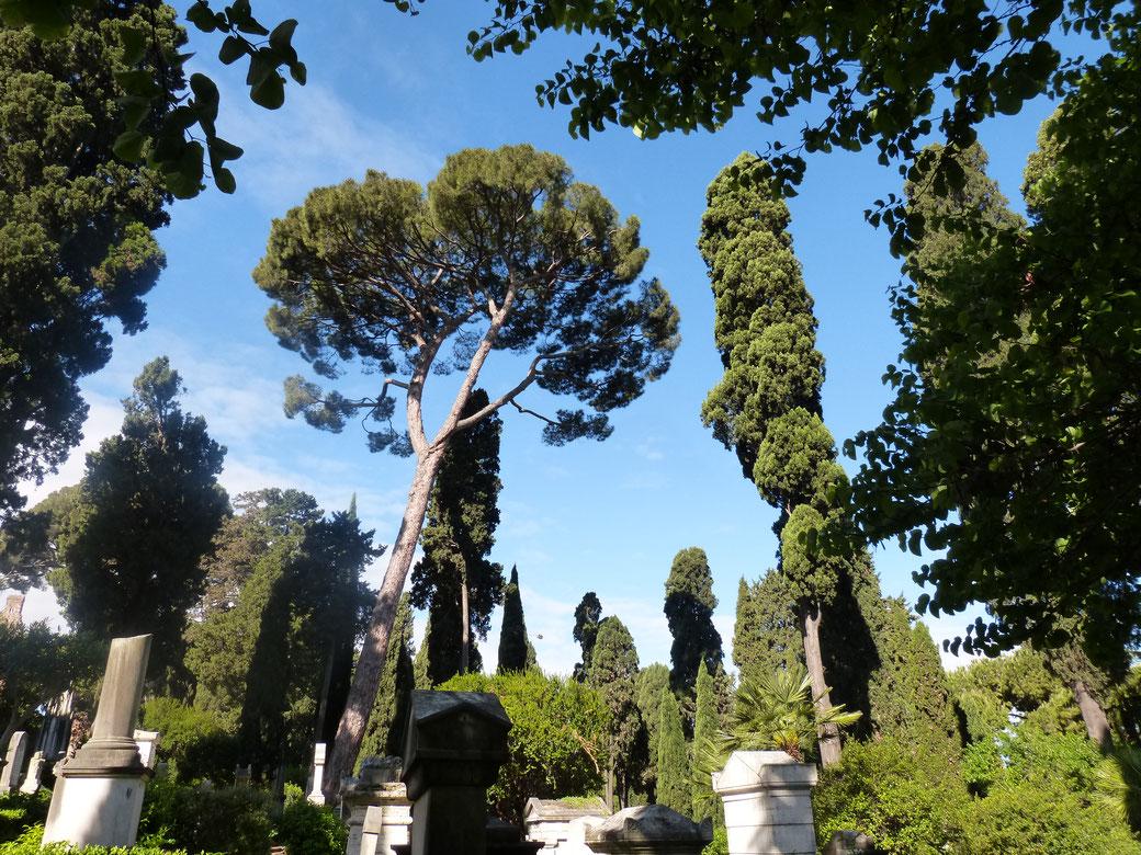 Der Campo Cestio liegt direkt an der Aurelianischen Mauer.