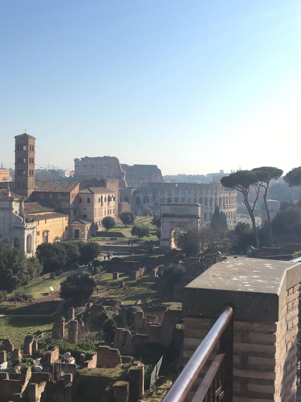 Blick vom Palatin auf das Kolosseum