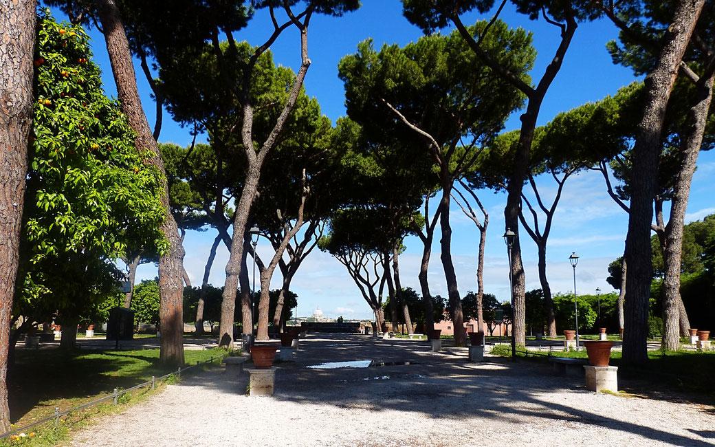 Vom Orangengarten auf dem Aventin hat man einen sagenhaften Blick auf halb Rom.