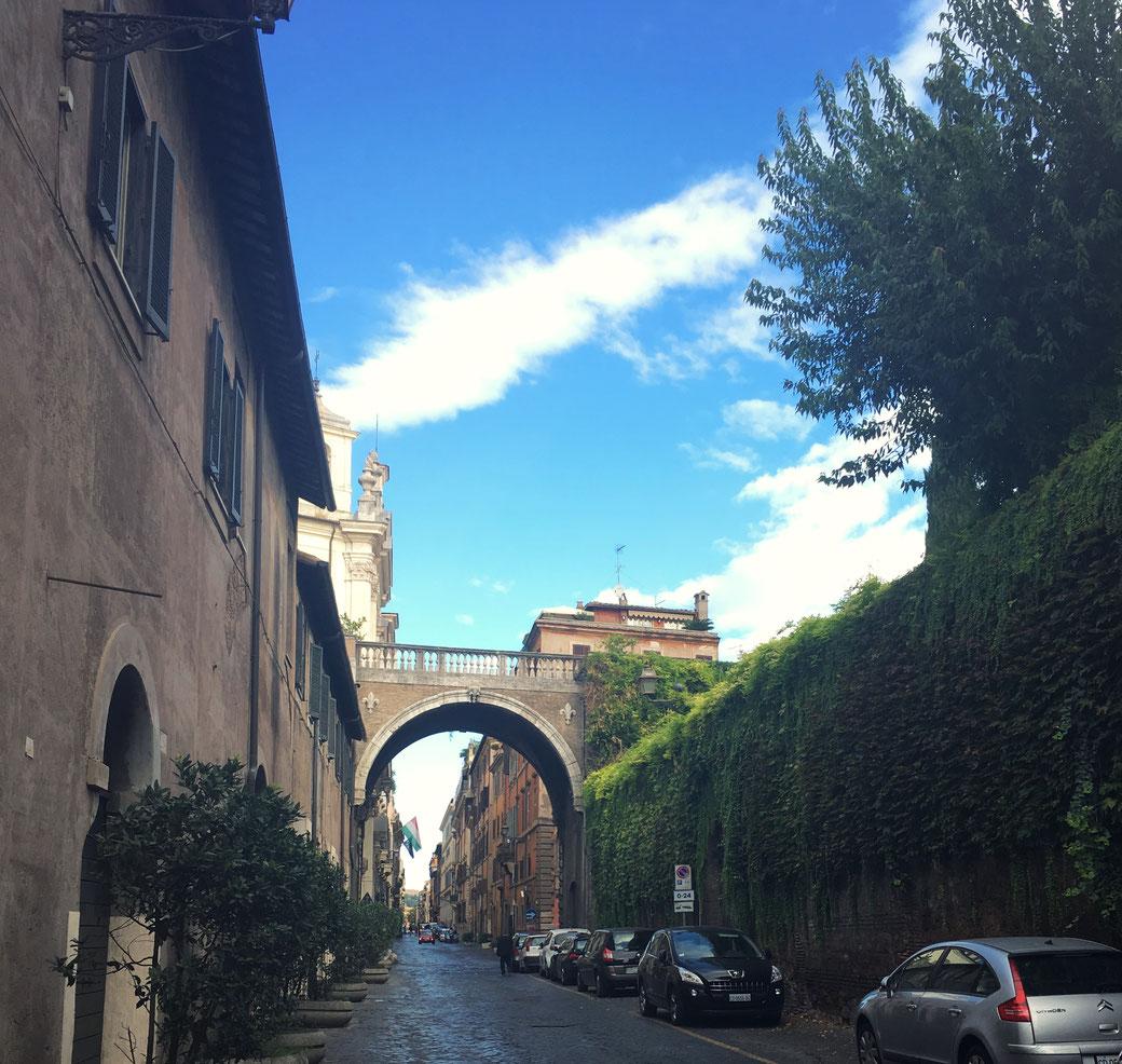 Eine der schönsten Straßen von Rom : Die Via Giulia