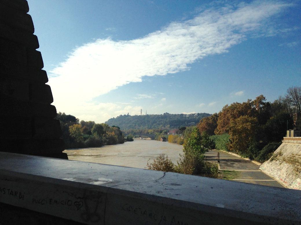 Grüner Ausblick von der Ponte Milvio
