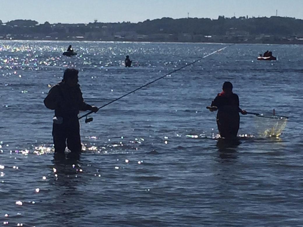 網走の趣味(釣り)写真6(海中3)