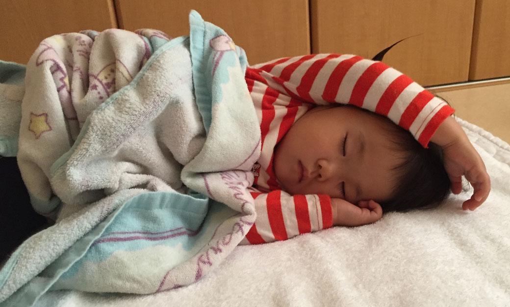 かわいい寝顔 写真3(こはるちゃん)