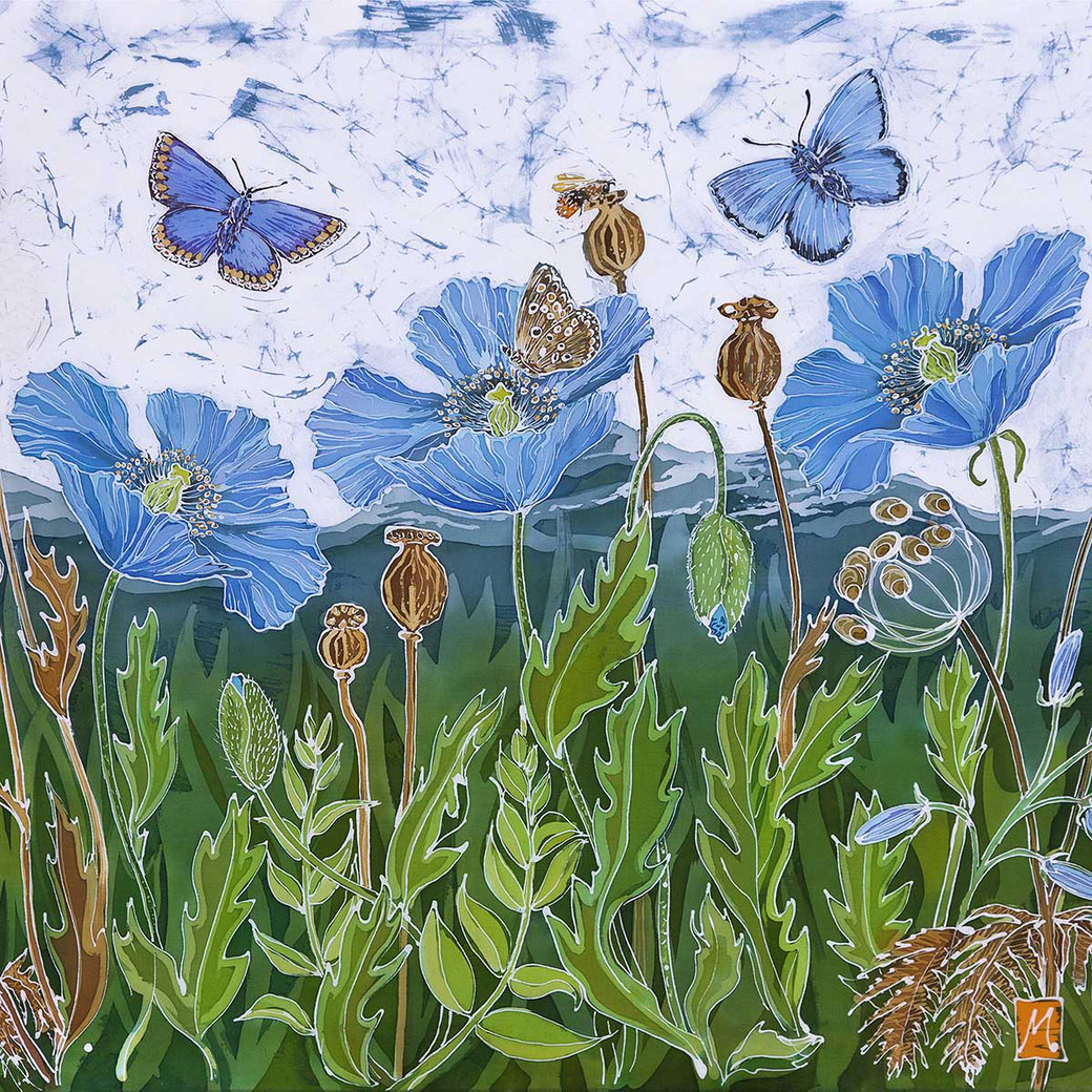 blue himalyan poppy print malvern hills summer flower butterfly bee insect meadow botanical flower art artwork