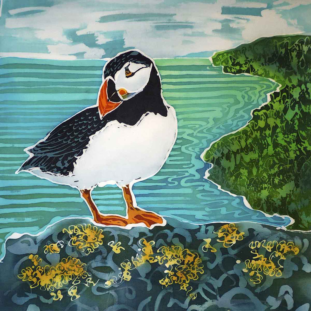 skomer island puffin print sea bird picture coastal scene twitcher birder bird lover gift