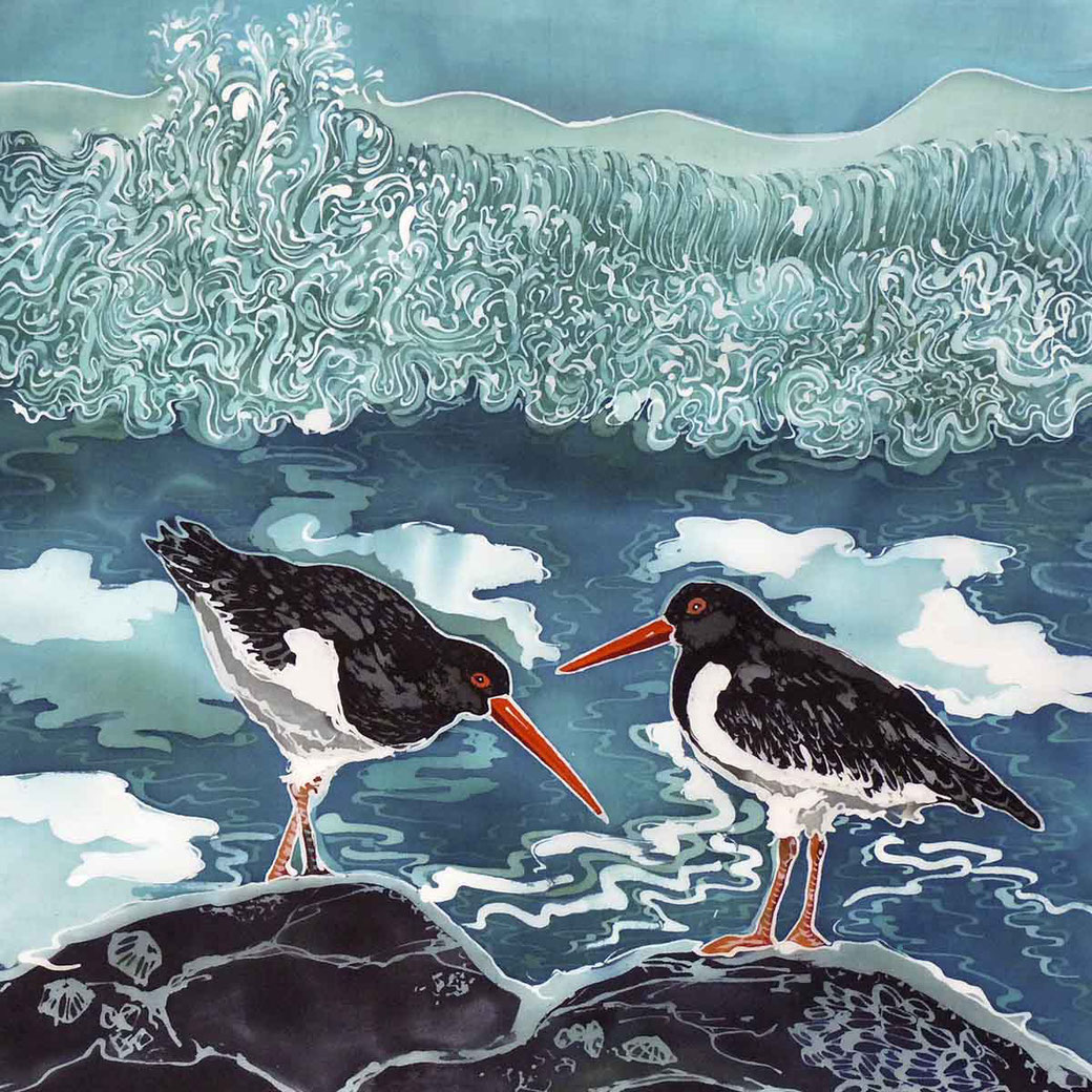 Oyster catcher wading bird sea bird fine art print birder twitcher
