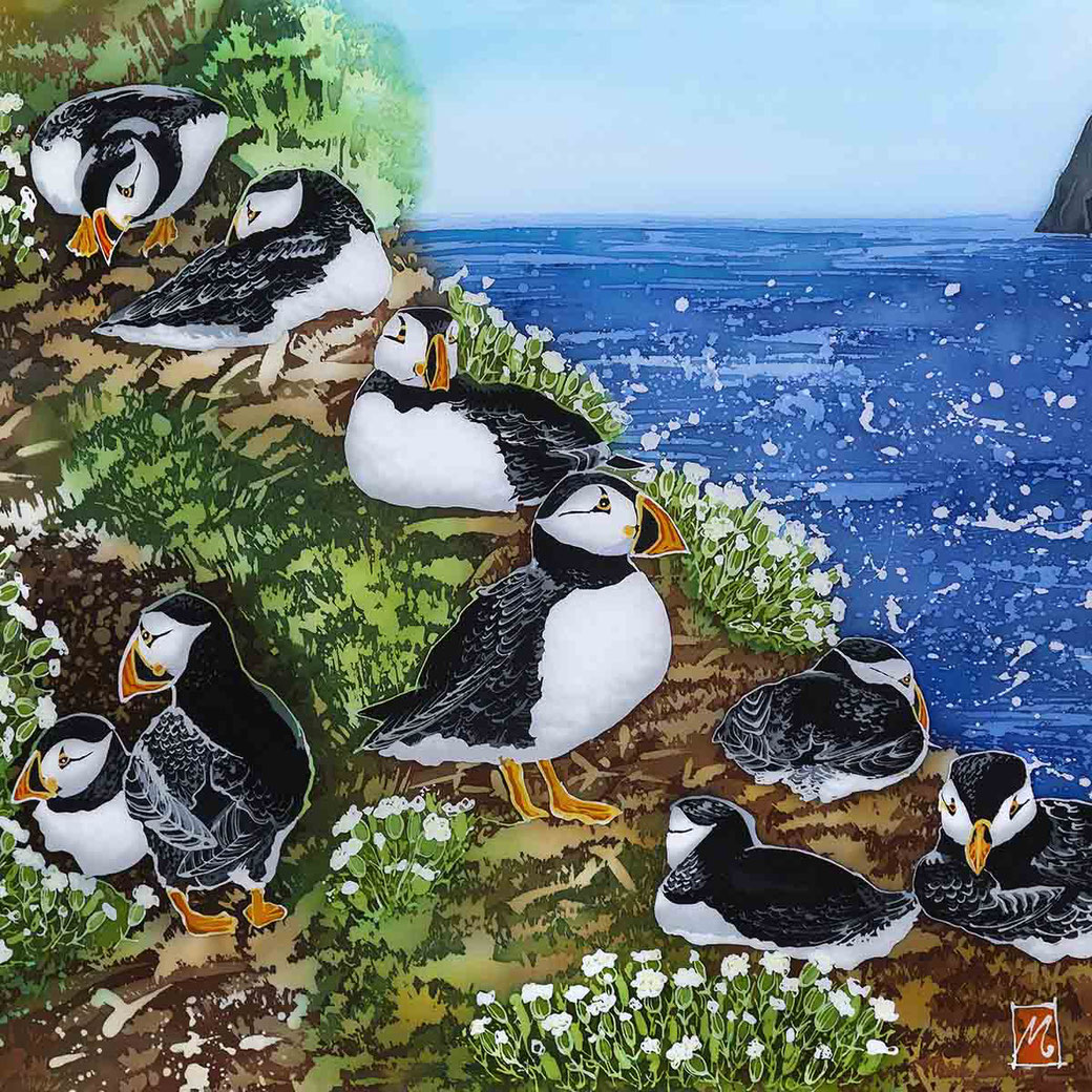 the wick skomer island puffins fine art print coastl sea bird scene