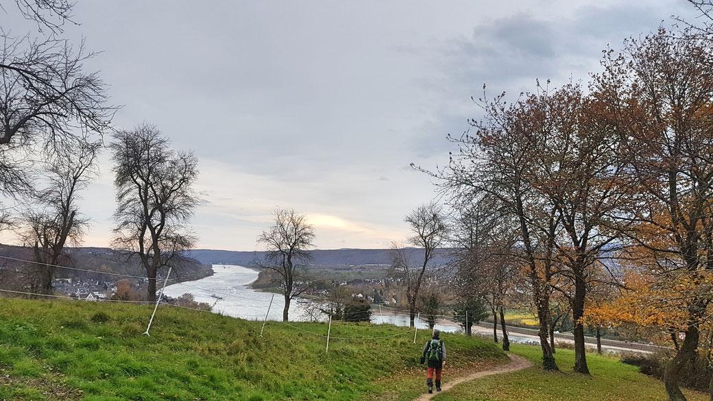 November auf dem Rheinsteig bei Okenfels
