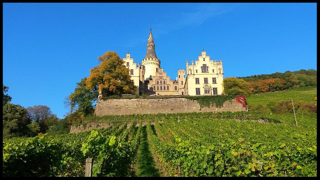 Schloss Arensfels im Herbst