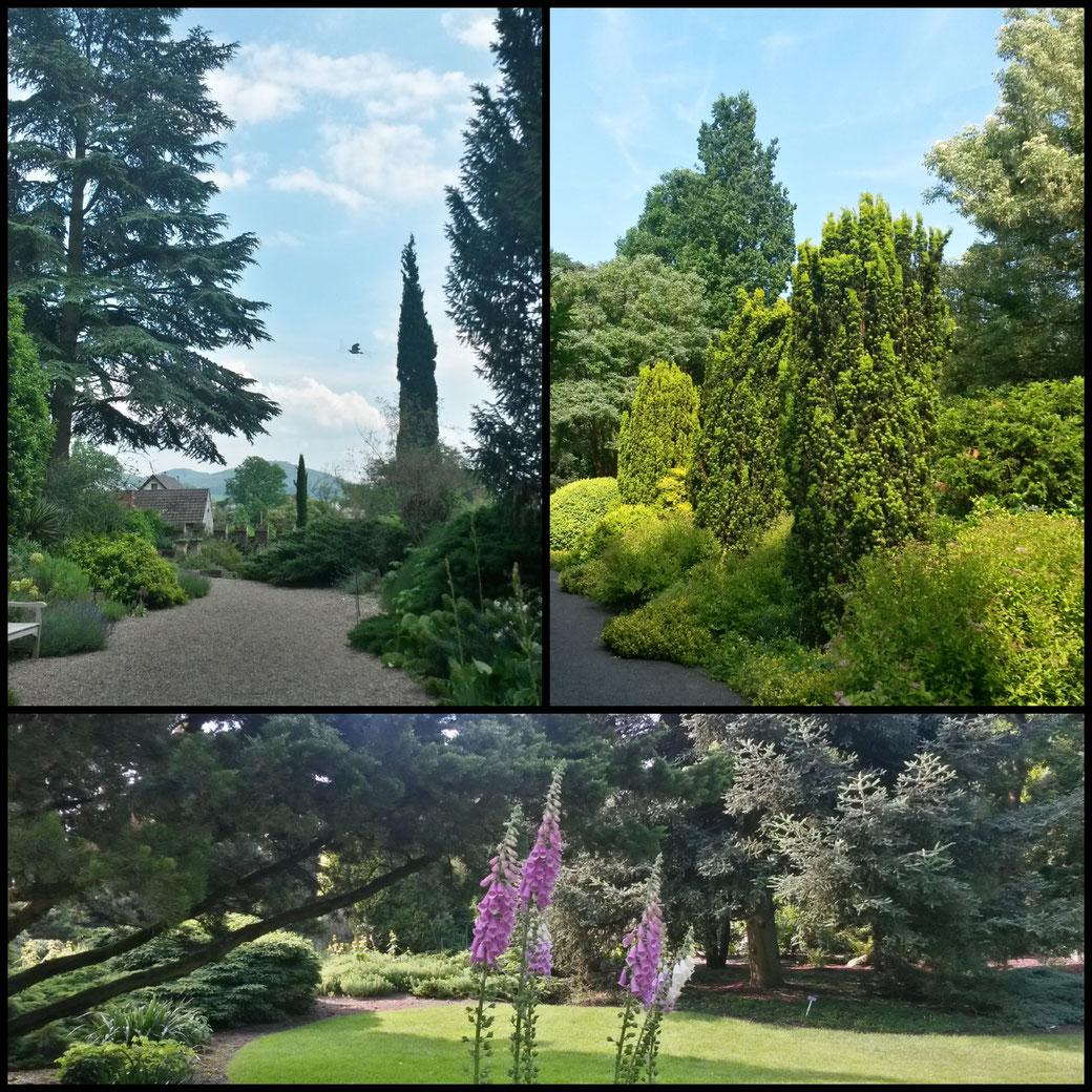 Gartenimpressionen Park Härle