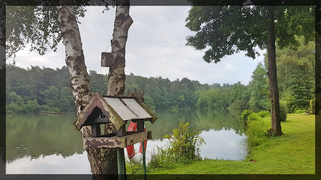 Stille Landschaften - am Angelpark