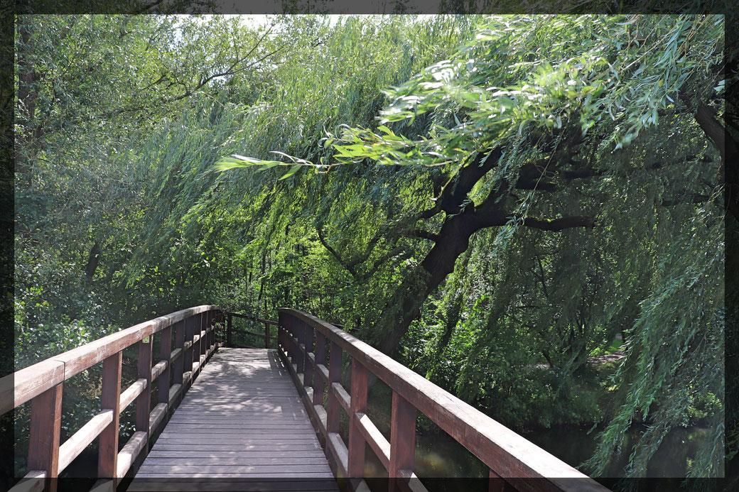 Holzbrücke über die Nette