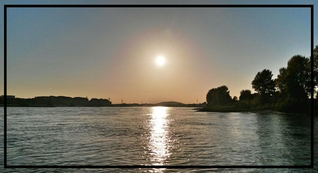 Rückweg entlang des Rheins - mit jedem Schritt romantischer