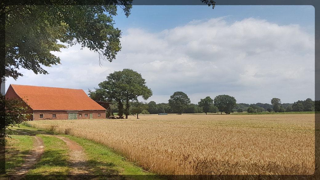 Stille Landschaften - zwischen Marienthal und Raesfeld