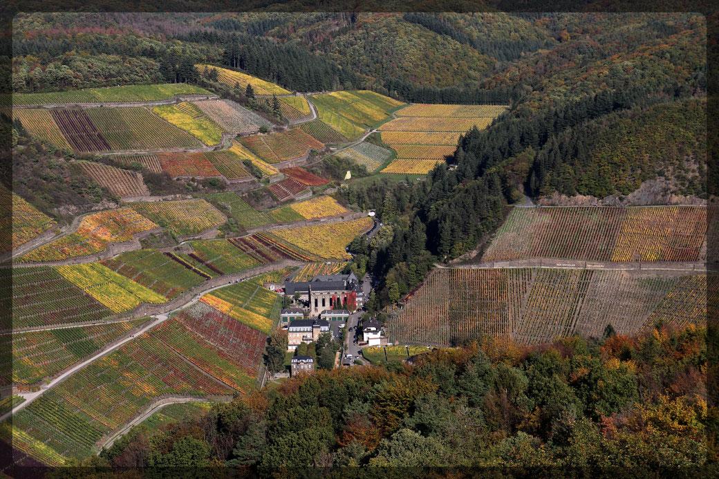 Blick auf das Weingut Kloster Mariental mit Klosterruine, ein romantischer Ausflugsort, aufgenommen mit CANON EOS 77 d vom Krausbergturm