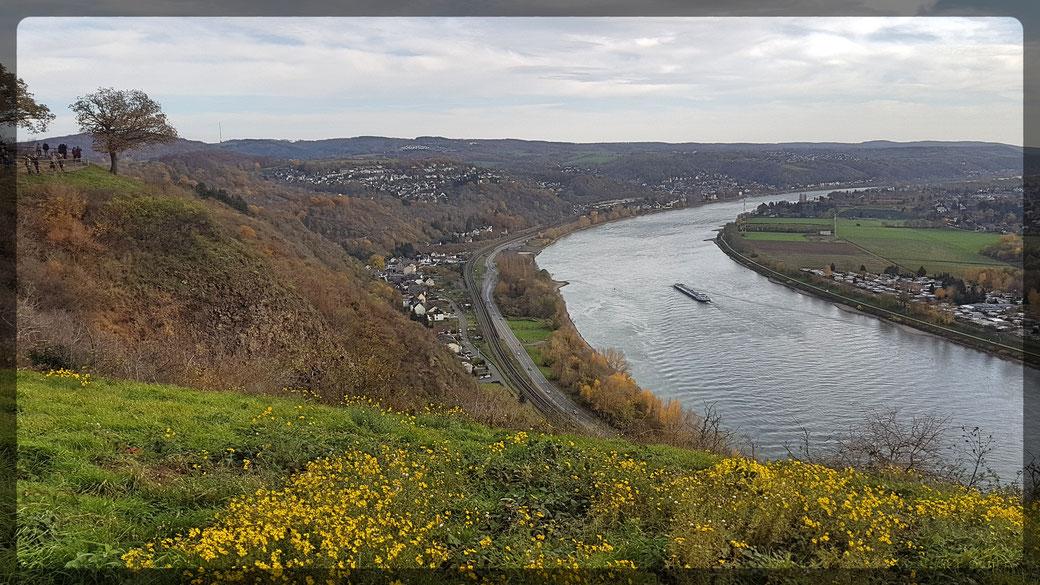 Erpeler Ley, Blick ins Rheintal