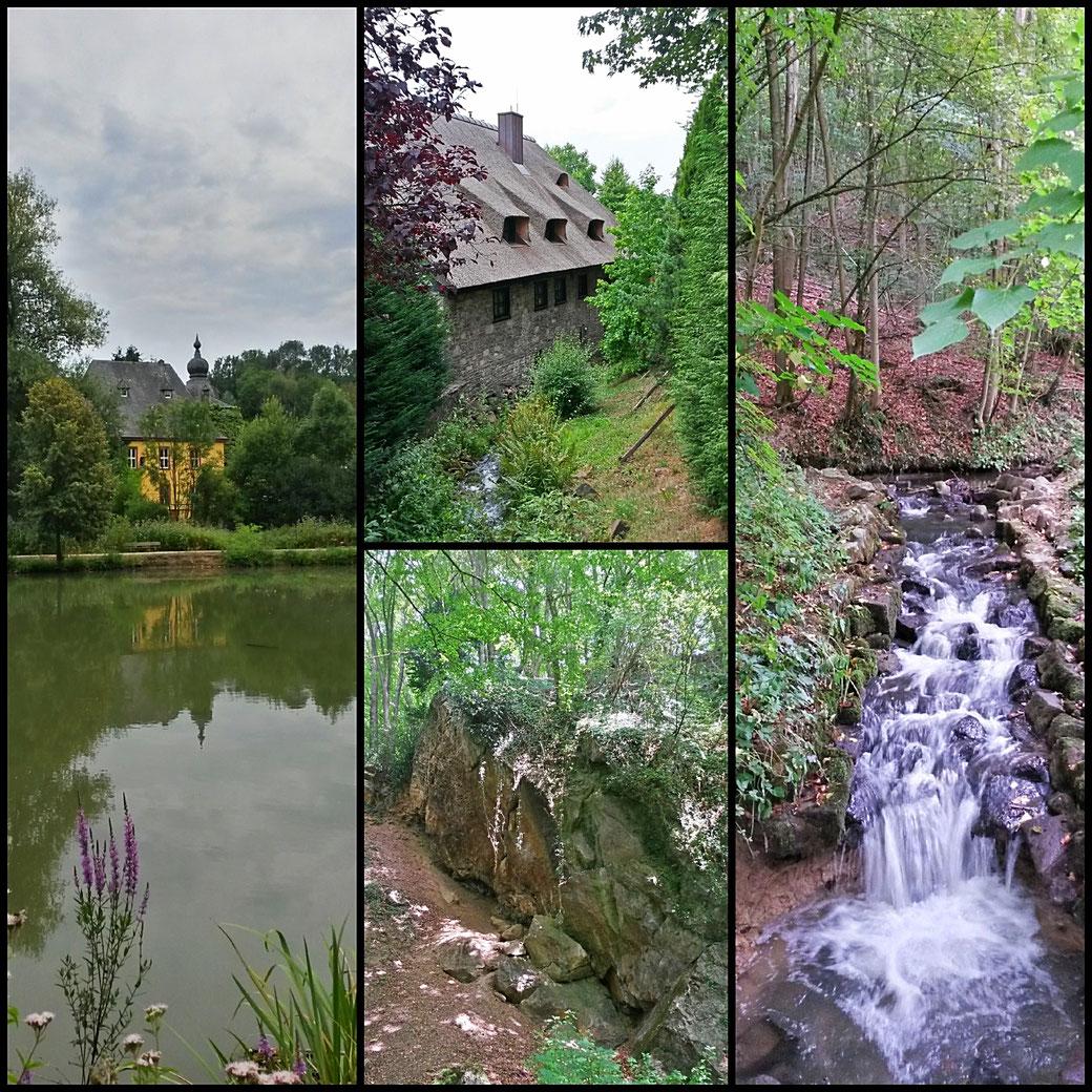 Wanderimpressionen: Burg Zweiffel, Korallenriff, Malteser Mühle, kleiner Wasserfall der Strunde