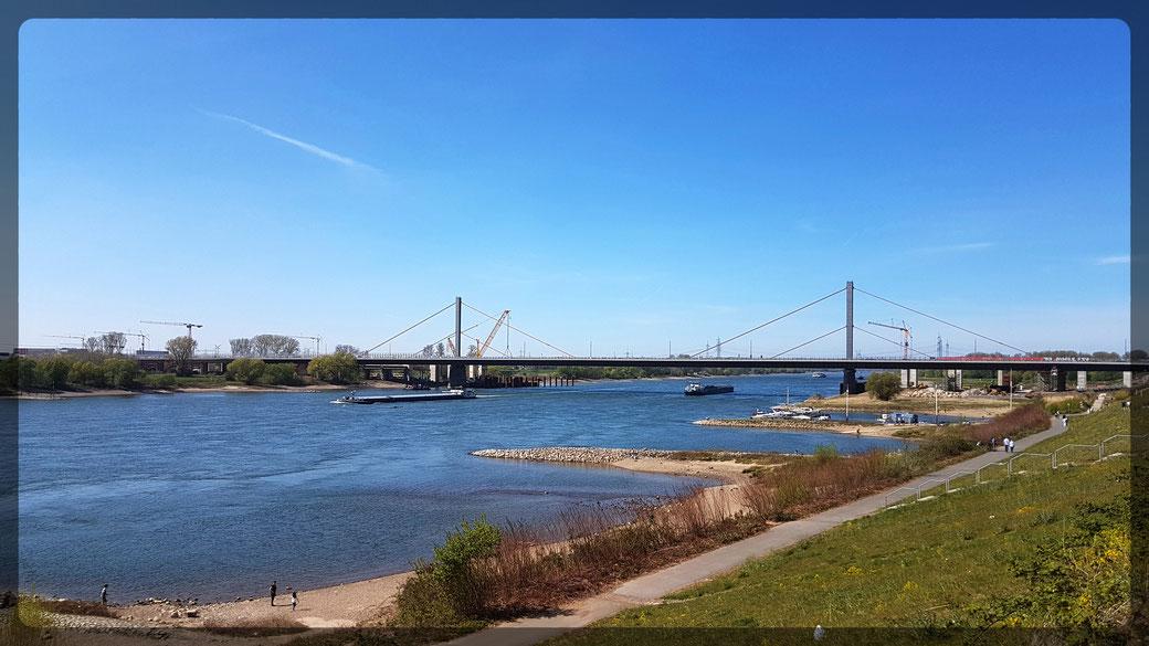 """Blick auf die Rheinbrücke bei Leverkusen von der Terrasse des Restaurants """"Wacht am Rhein"""""""