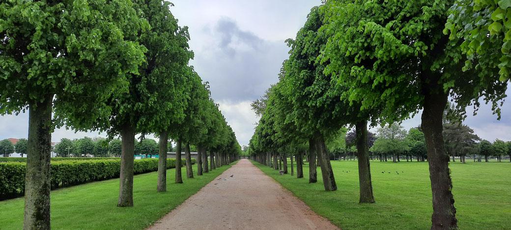 Grüne und harmonische Parkanlagen führen zu den einzelnen Ausgrabungsstätten innerhalb des Parks