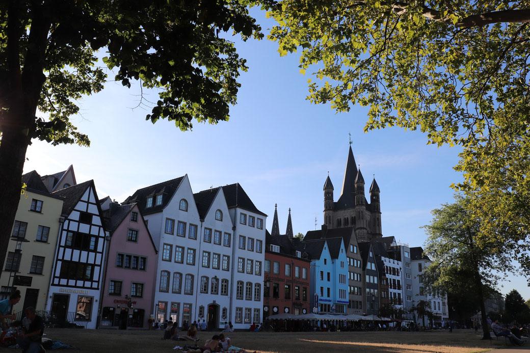 Altstadt Köln vom Rheinpark aus gesehen
