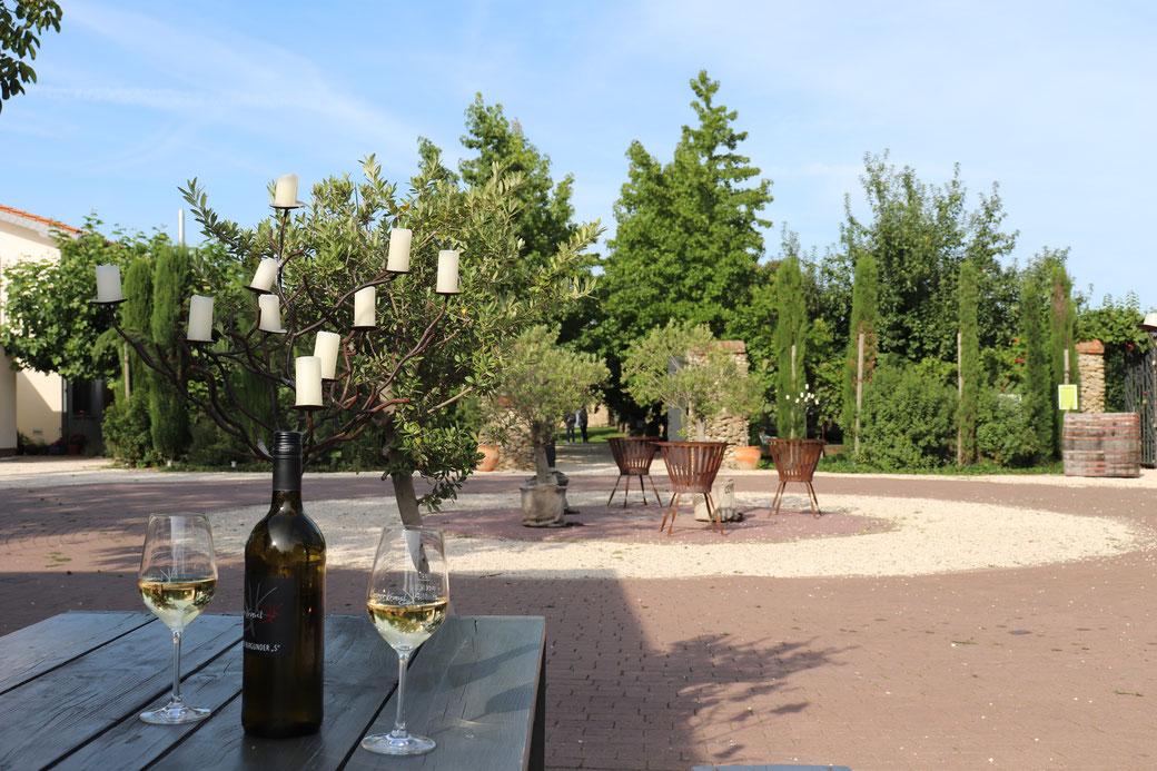 Auf dem Gelände des Weingutes Kloster-Kraul fühlen wir uns in die italienische Toskana versetzt.