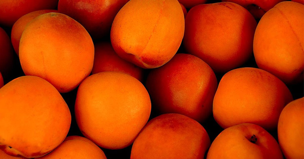 Rezept Topfenknödel mit Aprikosenkompott