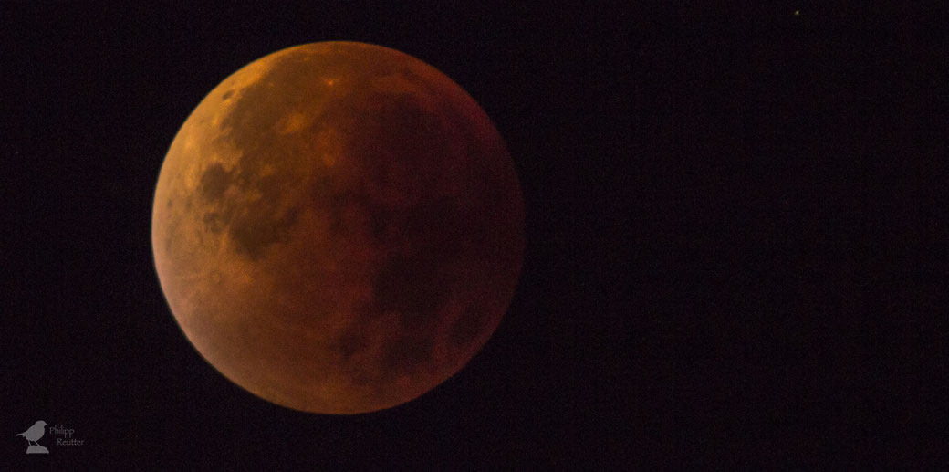Blutmond über Mainz am 28. September 2015