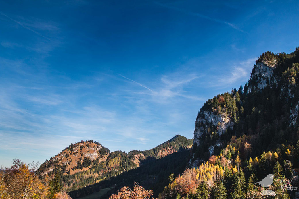 Allgäuer Panorama
